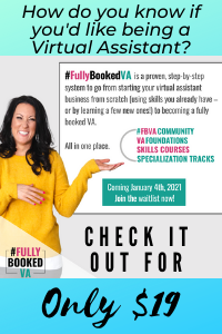 Check out the Fully Booked VA system for only $19!
